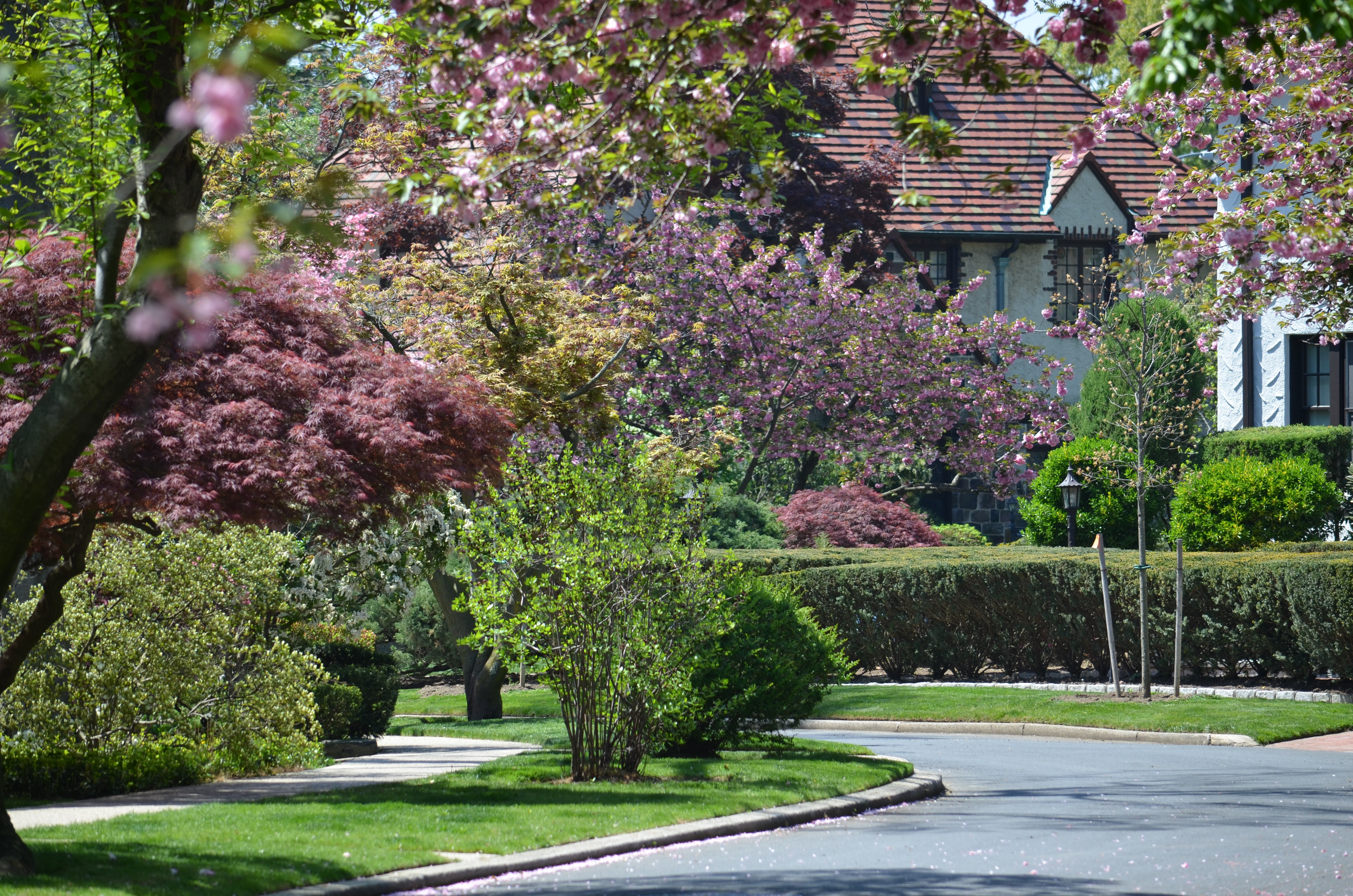 Outer Boroughs On The Rise Forest Hills Gardens Queens